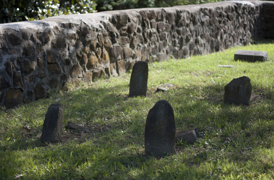 RigsbeeCemetery_confeds_061411.jpg